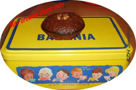 Mini_brownie_choco_noix_txt