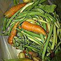 legumes recup (1)