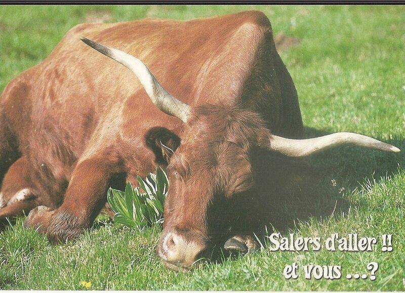 Salers, carte postale