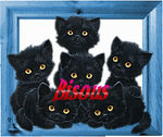 bisous_chats