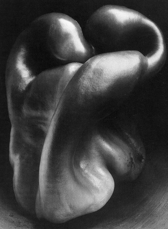 73. Edward Weston, Pepper No. 30, 1930.