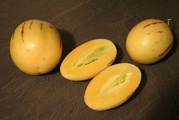 pepino-fruits