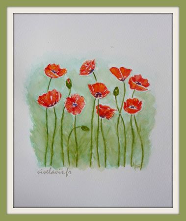 87 - Coquelicots-1
