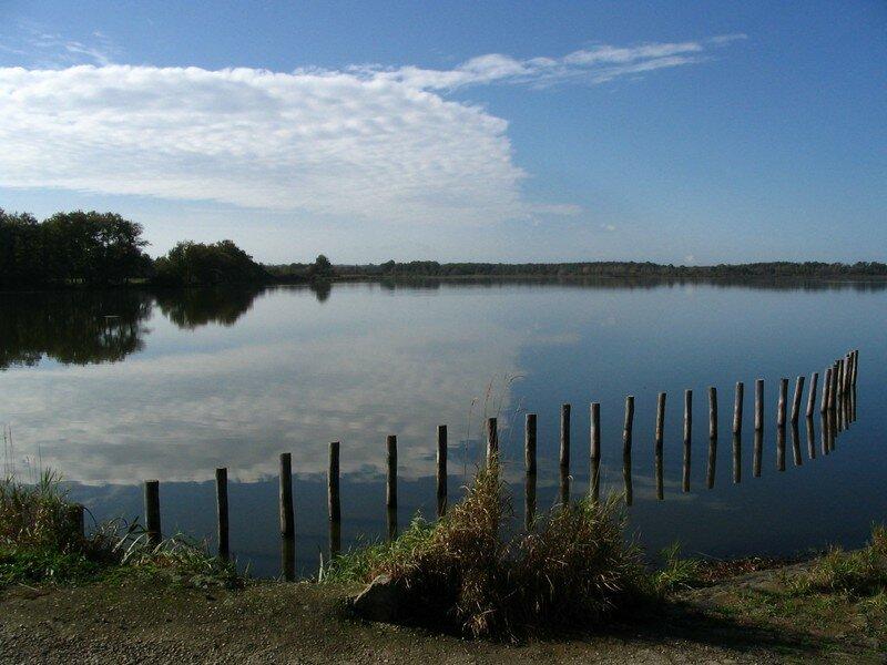 Etang Landes - Octobre 2006