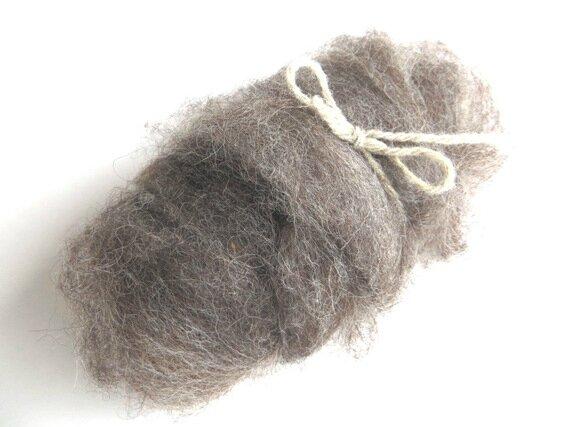 laine cardée