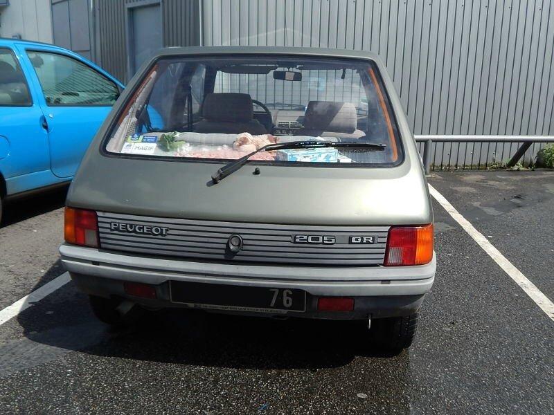 Peugeot205GRar