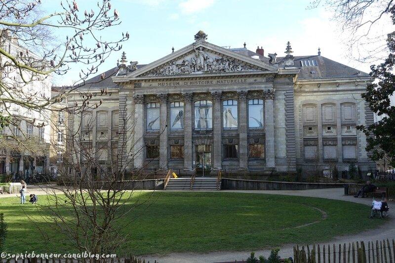 ville musée