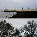 L'hiver (au bord de l'eau)