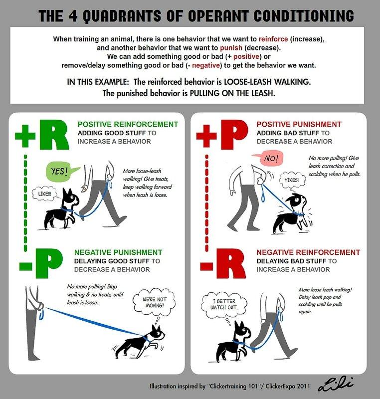 Super Affiche : aliments (diaboliques) dangereux pour les chiens - Le  EG72