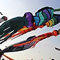 13-09-2014 - CERFS-VOLANTS A DIEPPE