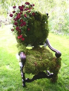 2e77ee7fdb8a0bab183257d458aff15f--garden-chairs-lawn-chairs