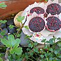 Muffins chocolat et framboise