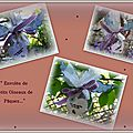 oiseaux de paques-001