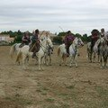 Camargue ADEPA 062