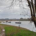 La Loire à Bou (en amont de Combleux et Orléans)