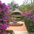 A0113-Villa de rêve à Toubab Dialaw