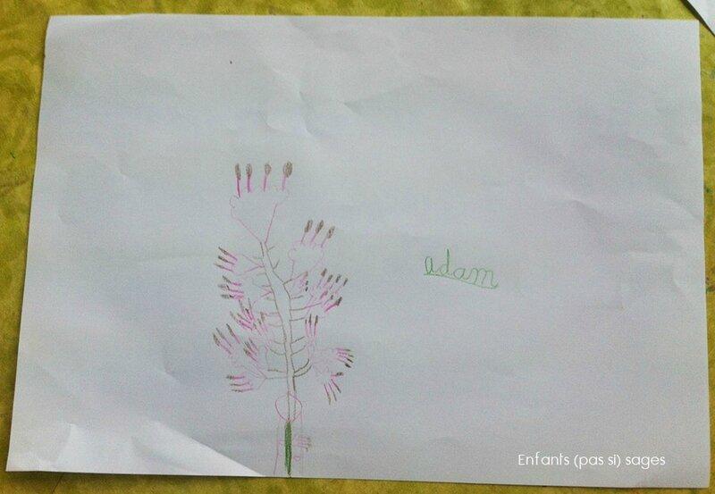 dessin-fleurs-GS
