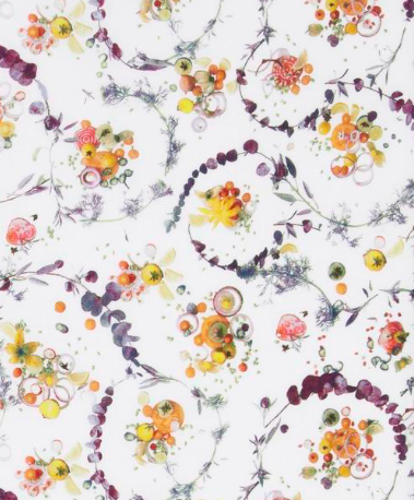 AW 17_30 Floral Thyme white coloris A