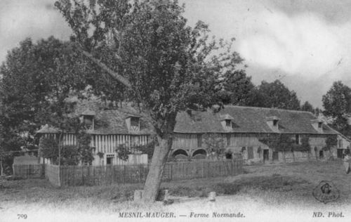 Le Mesnil-Mauger - ferme normande