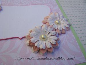 20130315 carte fleurie 02