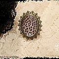 BAGUE LEOPARD - Copie (2)