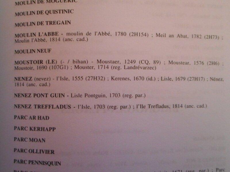 Dictionnaire topographique Lieu dit Nenez ou Lisle