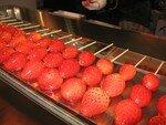 fraises_de_Noel