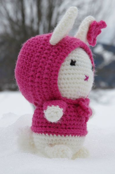 Bunny in the Snow (13)