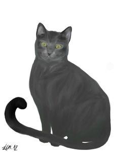 chatenbassequalite