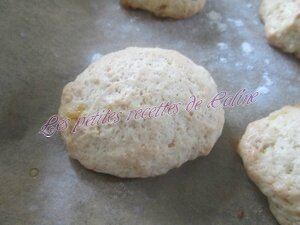 Biscuits au vin blanc20