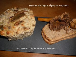 terrine de lapin, cèpes, noisettes 1