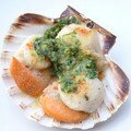 Coquilles Saint-Jacques toutes simples