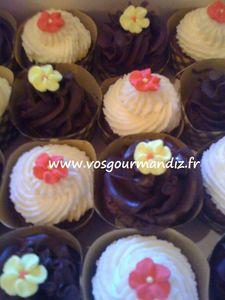 Mini cupcakes Vos Gourmandiz