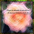 Citation : lorsque tu atteindras le coeur de la vie, tu trouveras la beauté en toute chose (kahlil gibran)