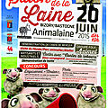 Salon de la laine 2015