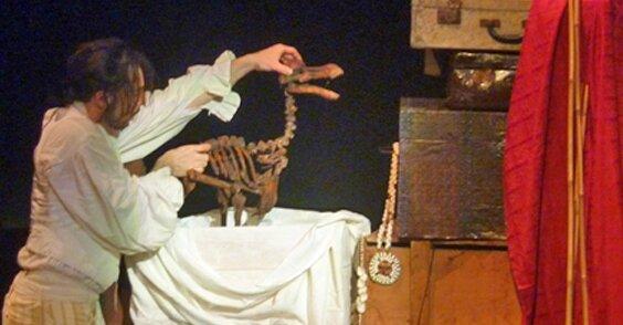L Os du dodo - Doniphane et le dodo light - (C) Botti