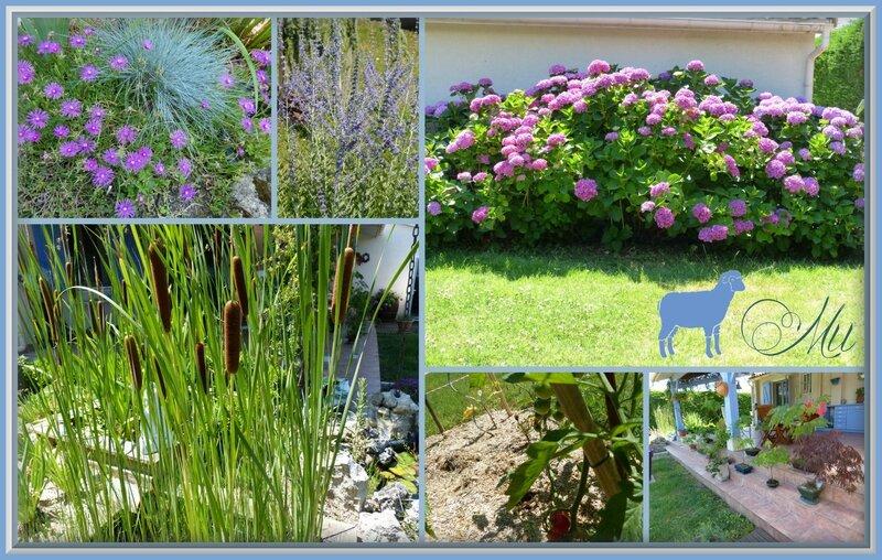 jardin 20 juin 2015 mosaique