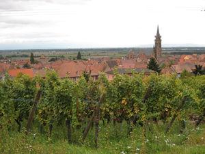 1er_octobre___Alsace