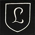 130e panzerdivision