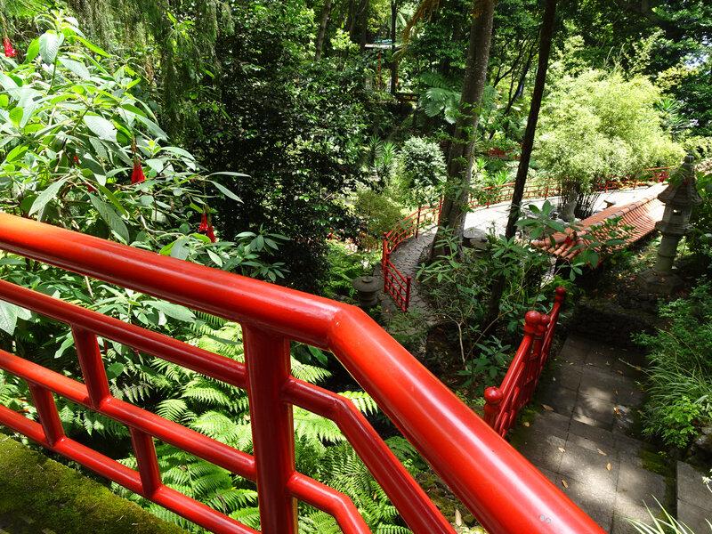 15 Jardin Madère 14