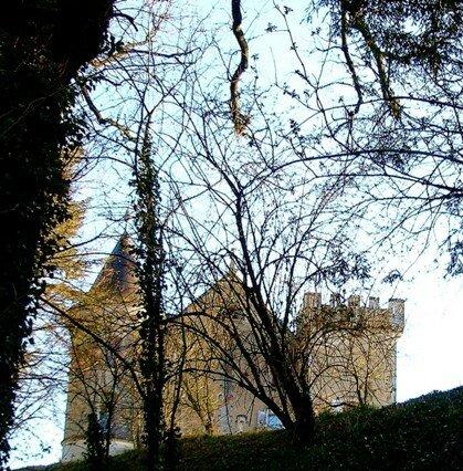 vouthon_chateau_de_La_Chaise_fev_08__6_