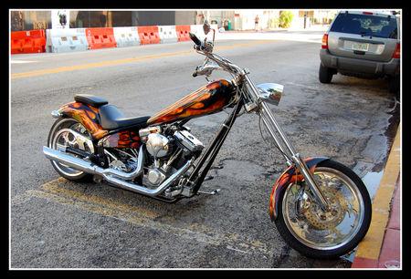 2008_08_16___WE_20___Miami_0120