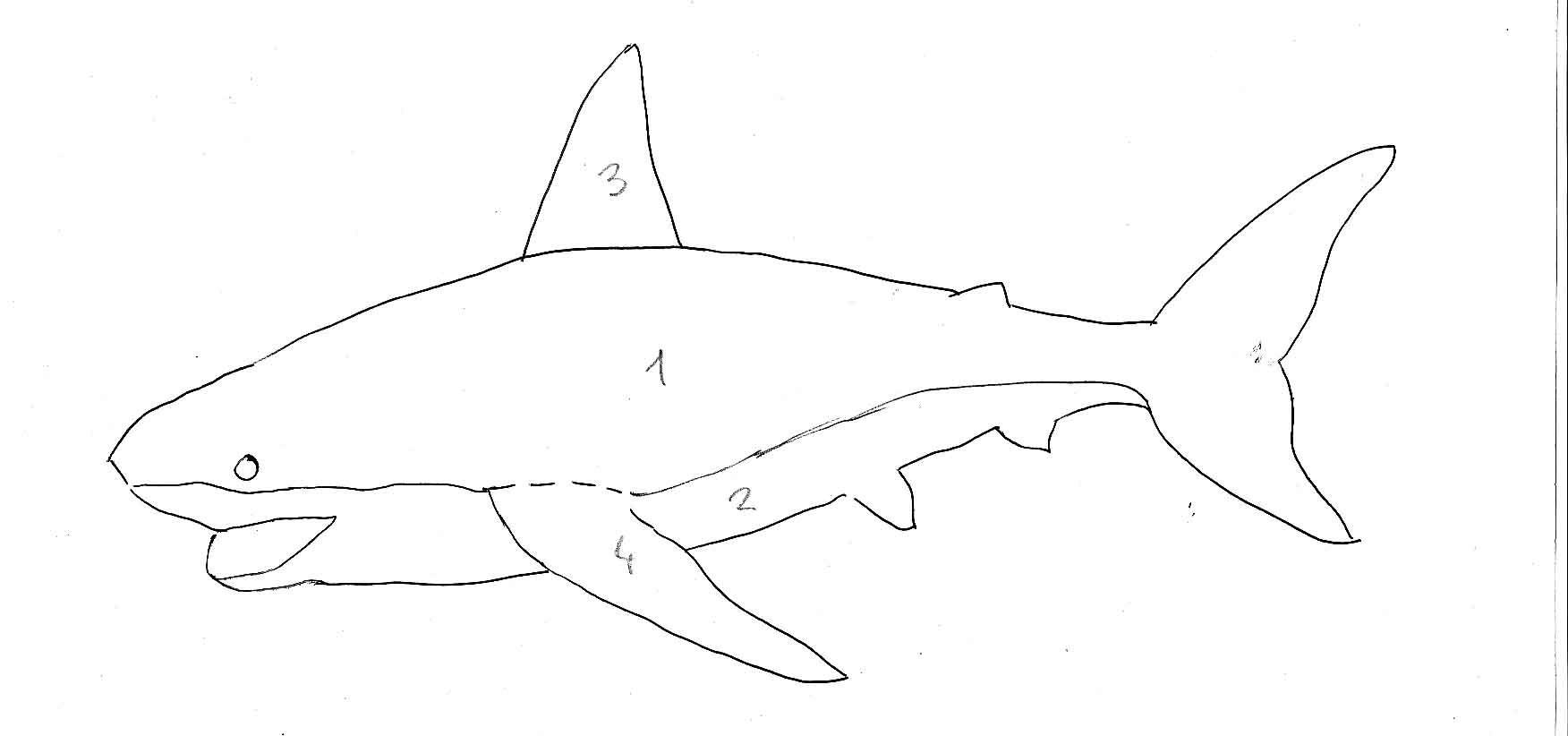 Doudou requin tuto