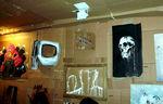 20110901CartonPoubelleLaViePixPedroWeb001