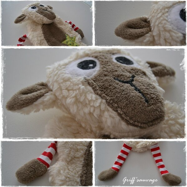 le mouton de Matéo3