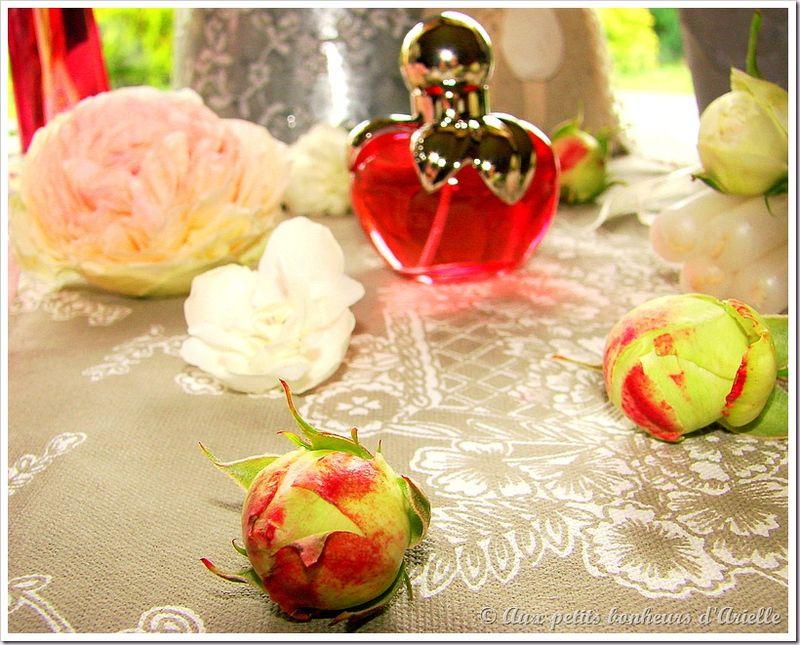 Roses, pivoines et seringat (12)