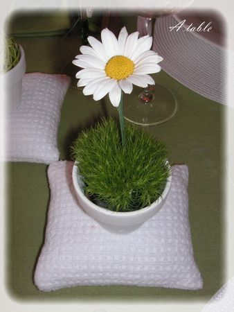 marguerite_016_modifi__1