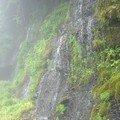 Shiraito no taki (Shiraito Falls)