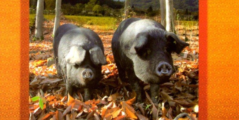 Ici, le porc c'est du cochon, mais du bon…