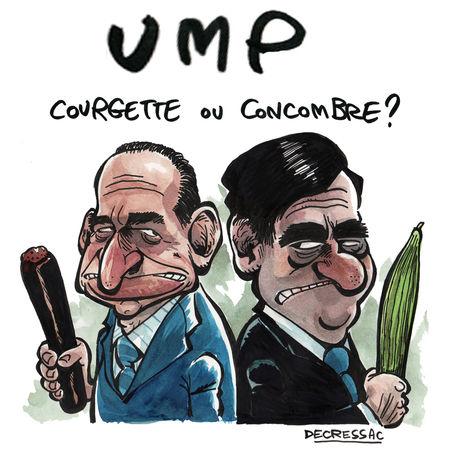 Courgette_ou_concombre_light
